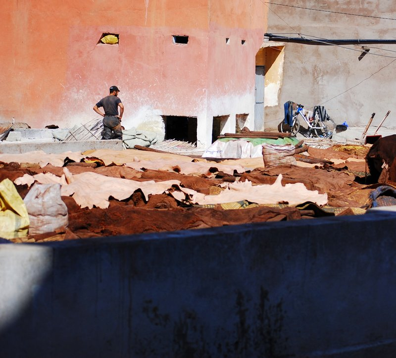 Marrakech Souk Guide - Tannery