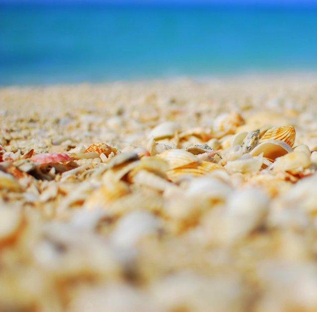 Offbeat Dubai Jumeirah Beach