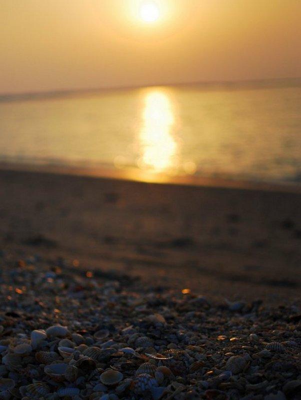 Offbeat Dubai Sunset at Jumeirah Beach