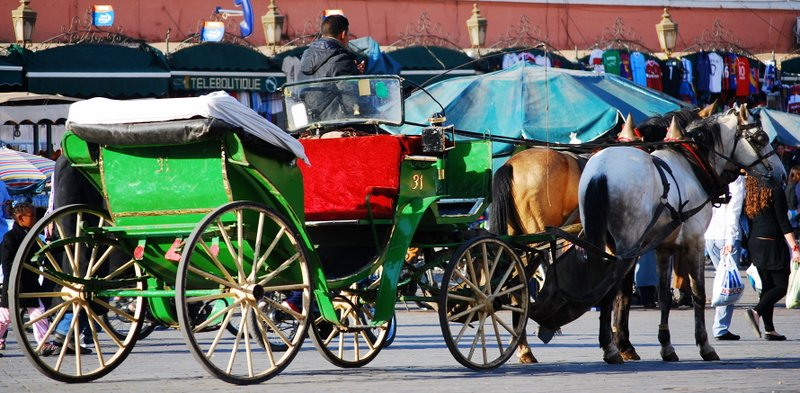 Marrakech things to do Carriage