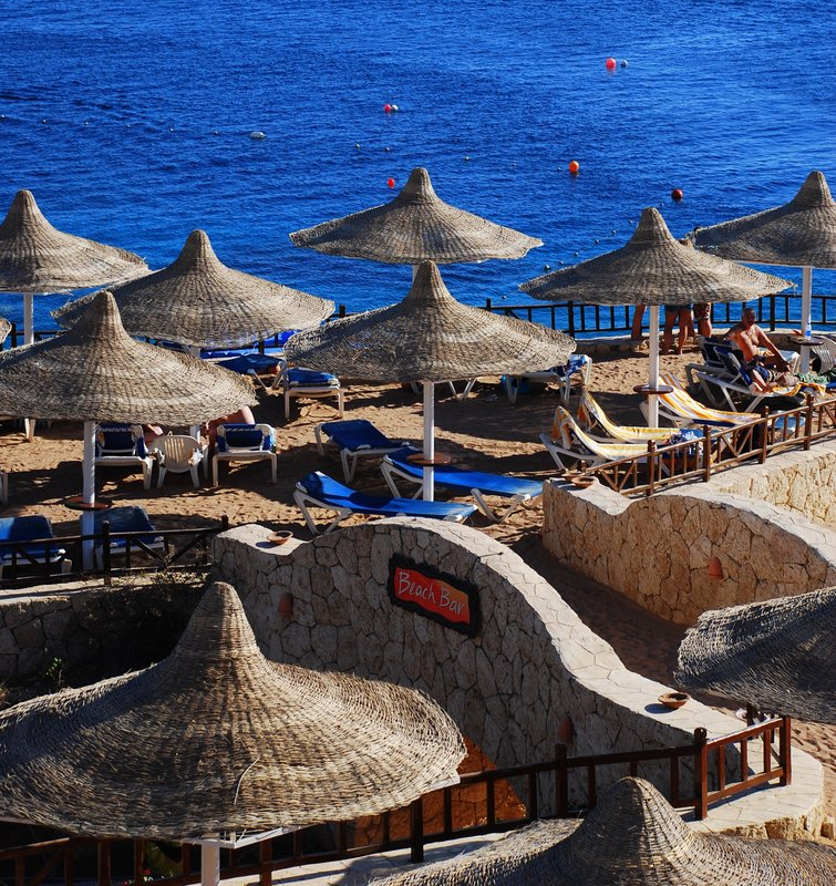 hilton sharm el sheikh sharks bay beach bar