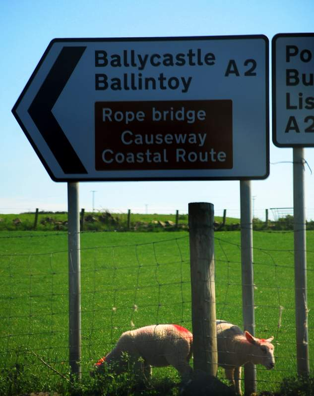 Causeway Coastal Route 3