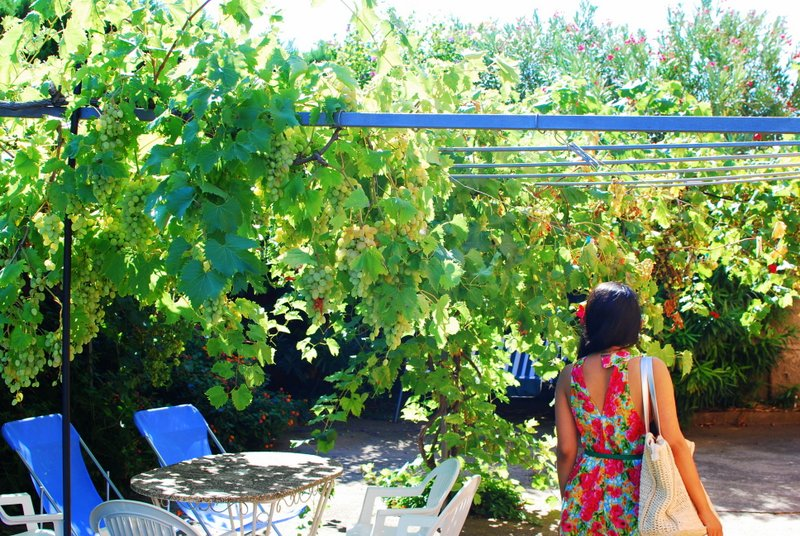 Spain has some gorgeous apartments - this one we stayed in had a garden full of grapevines :)