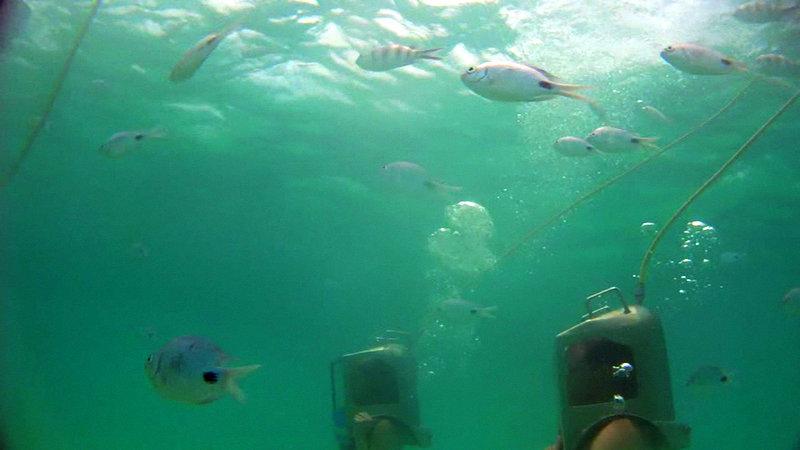 undersea walk mauritius - under the sea
