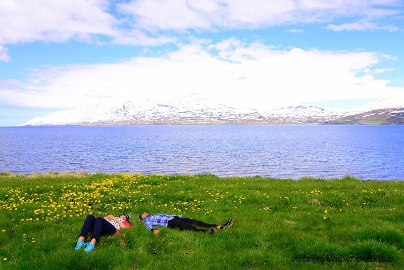 Icelandic Farm Holidays discount code