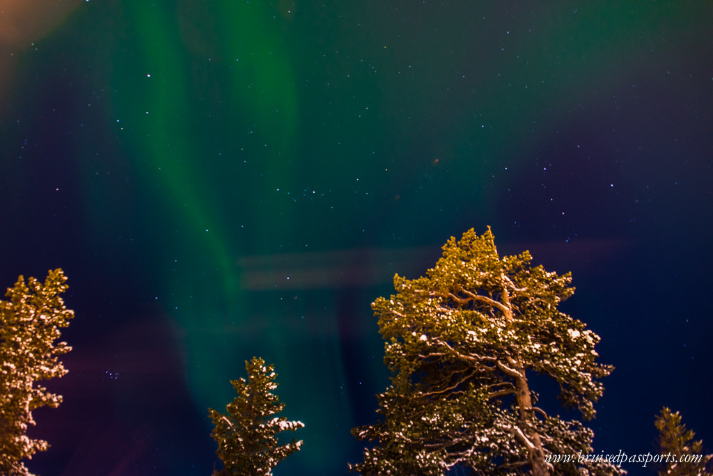 Northern lights safari Rovaniemi