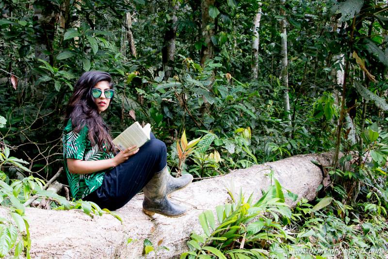 Peruvian Amazon Rainforest Expeditions Villa