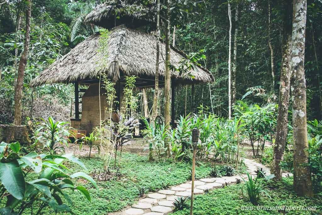 Peruvian Amazon Rainforest Expeditions Villa Review-33