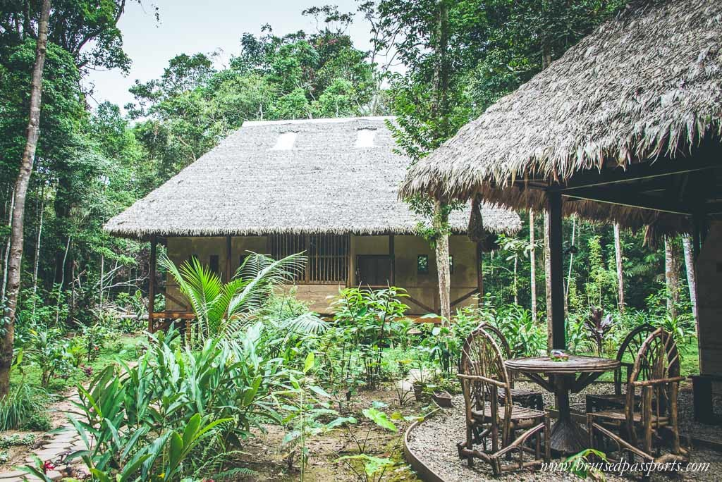 Peruvian Amazon Rainforest Expeditions Villa Review-34