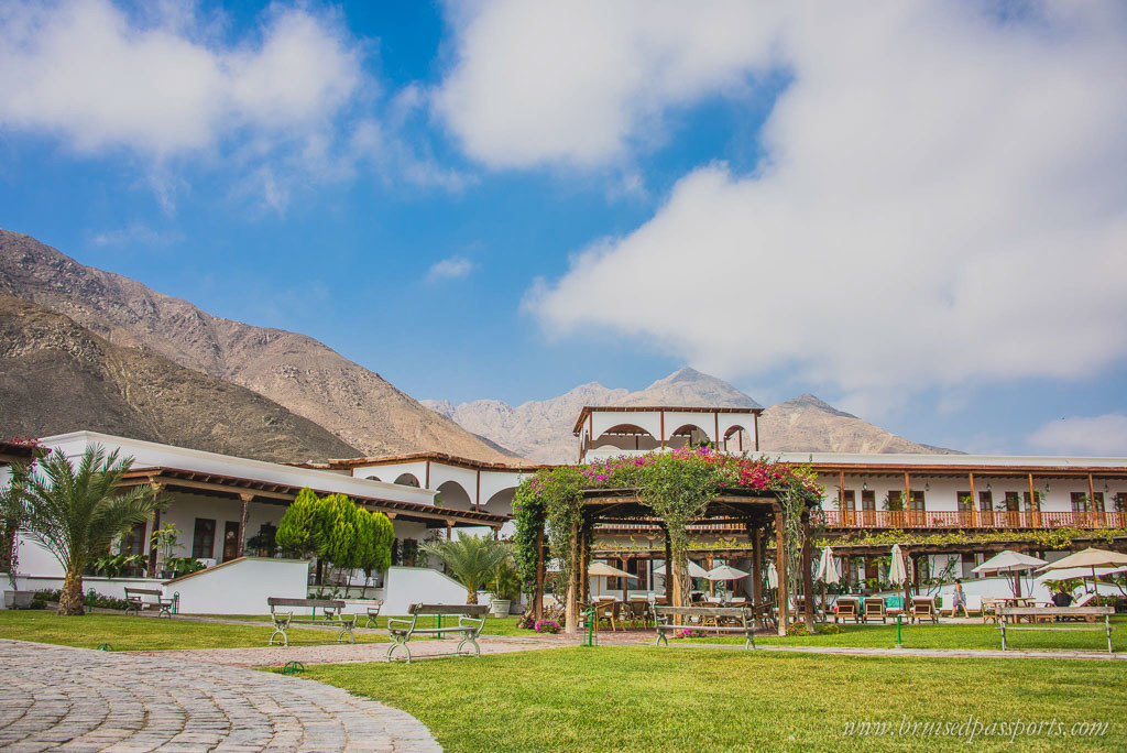 Vineyard hotel in Ica Peru