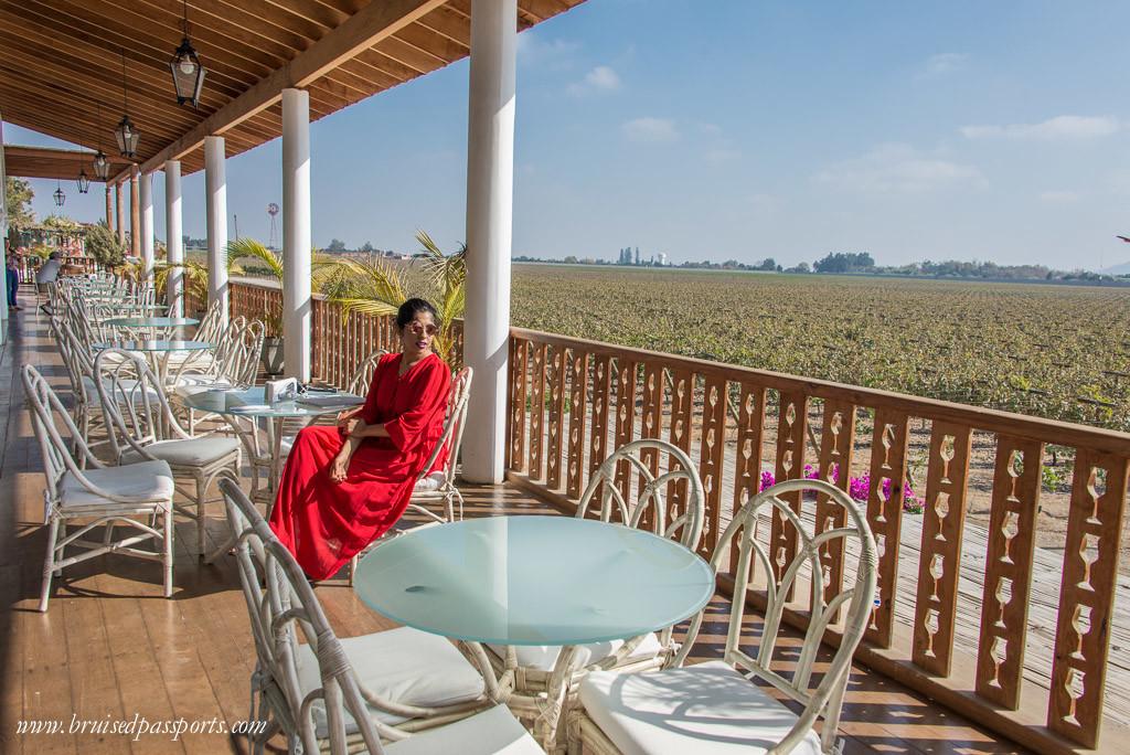 Vineyard hotel in Ica Peru