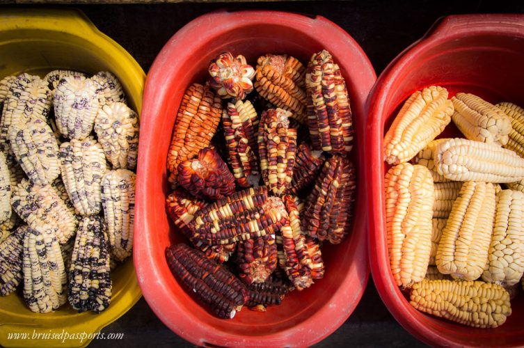 Different types of corn in Peru