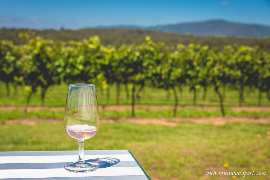 Hunter Valley day trip from Sydney