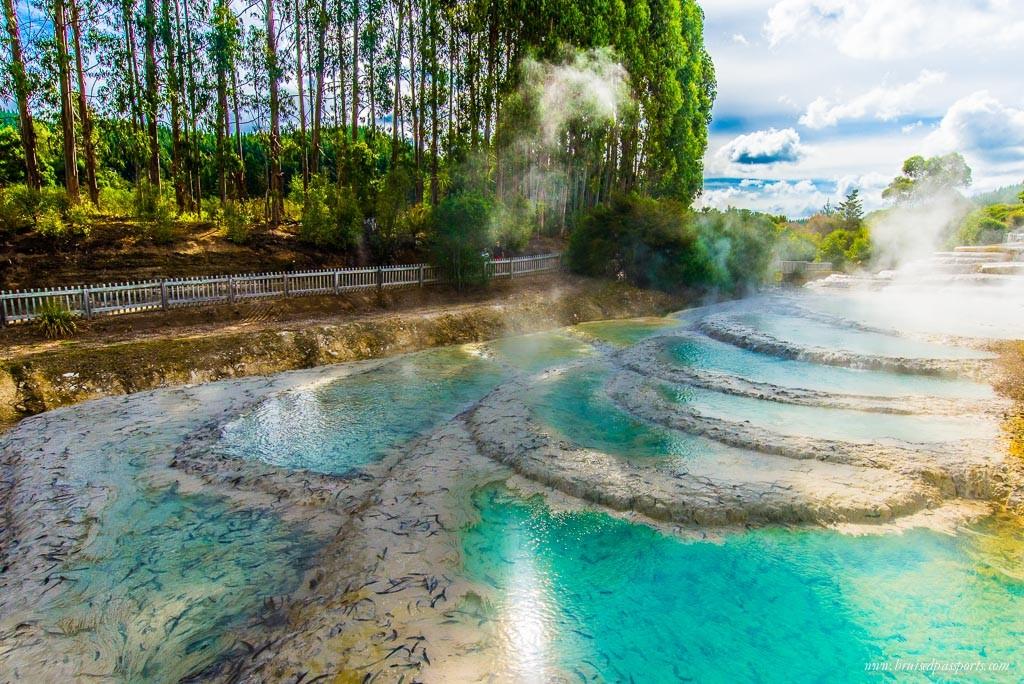 New Zealand road trip itinerary Waireki silica terraces taupo