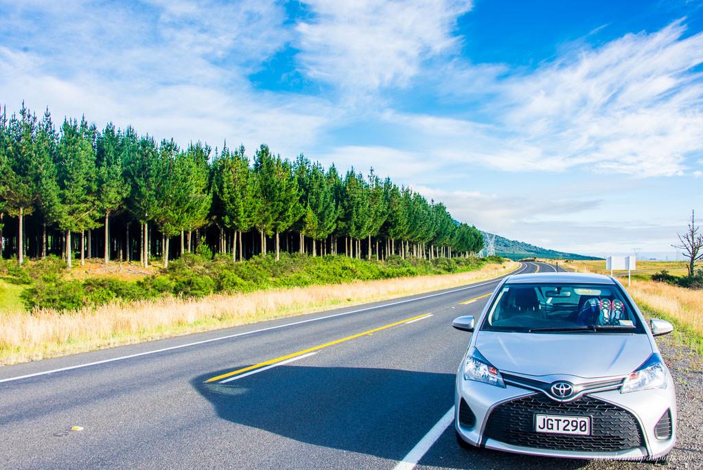 New Zealand road trip itinerary drive