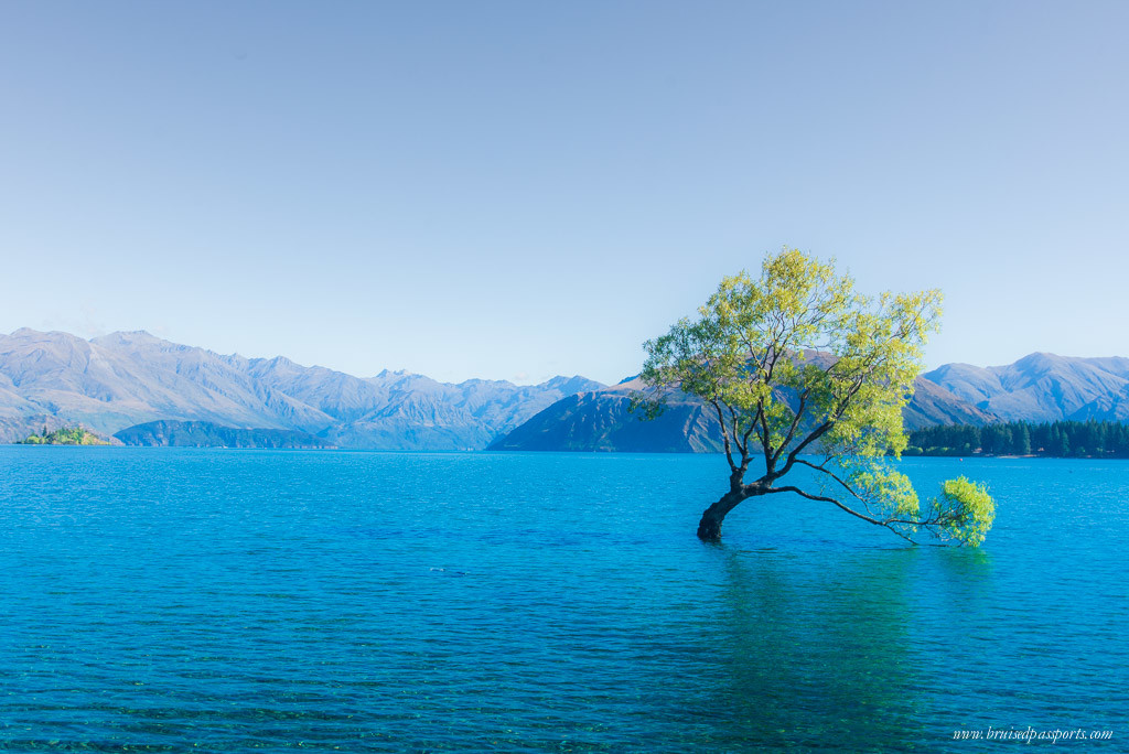 New Zealand road trip itinerary lake wanaka