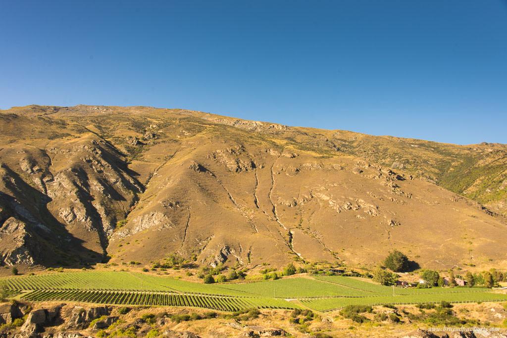 New Zealand Road Trip itinerary Otago winery