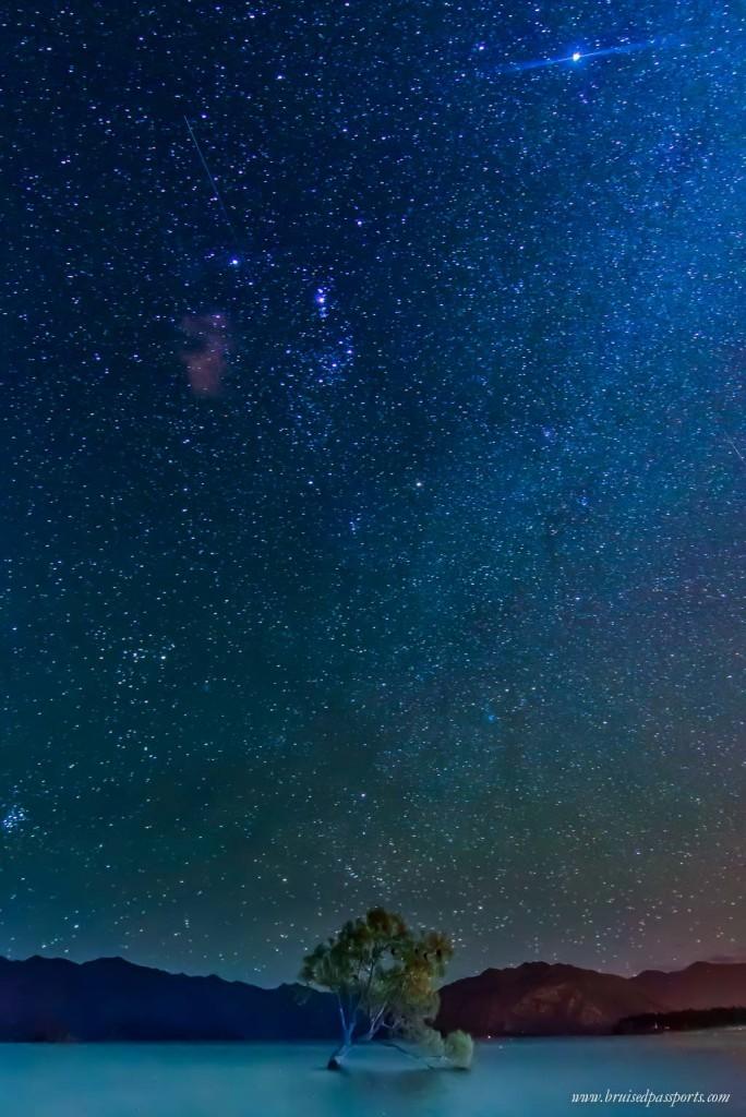 That wanaka tree lake wanaka night sky