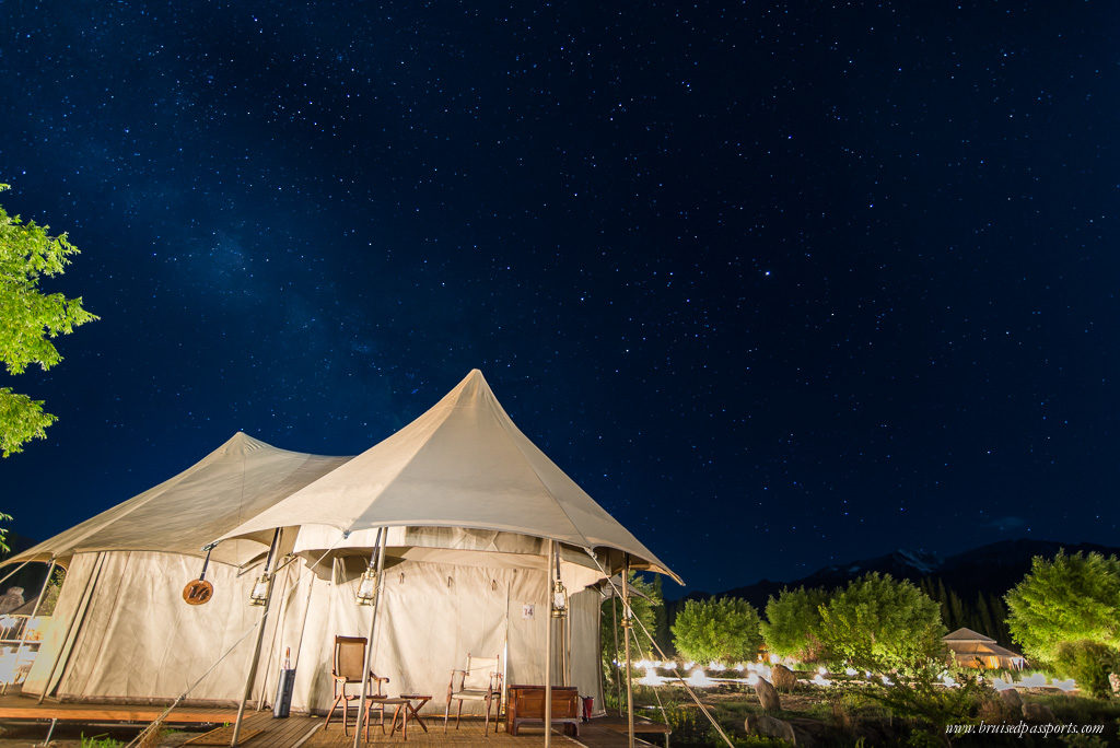 Night sky at Chamba Camp Thiksey - thousands of stars and The Milky Way