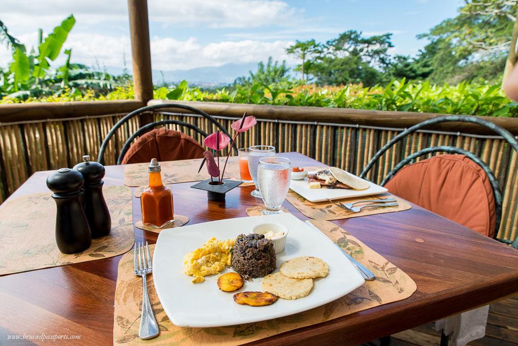 Galle Pinto Costa Rica Local Dish