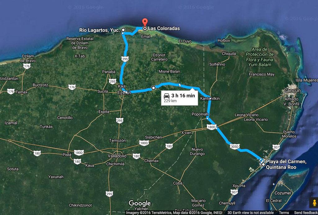 driving directions from Playa Del Carmen to Rio Lagartos in Yucatan Peninsula