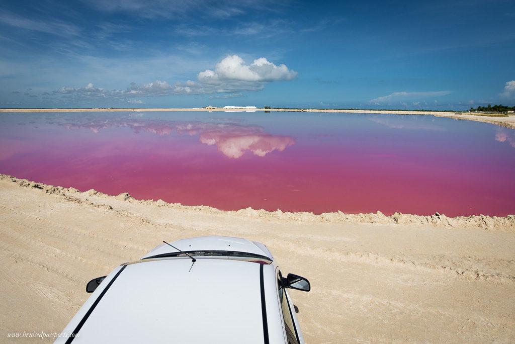 pink lagoon in los coloradas Yucatan Mexico