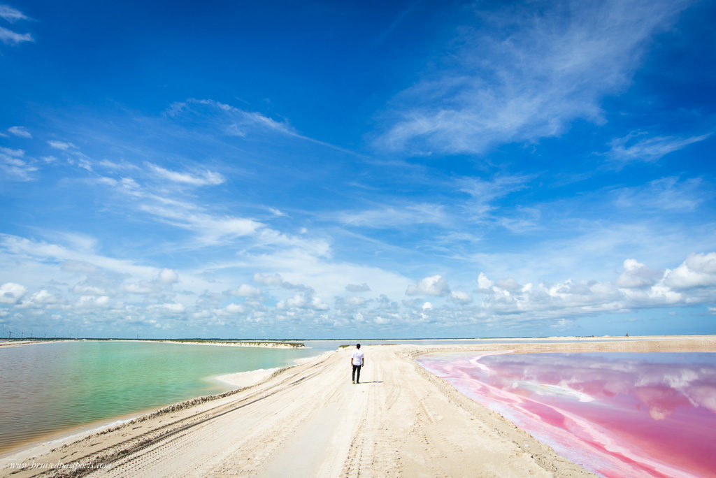 Pink and Green coloured lagoons in Las Coloradas