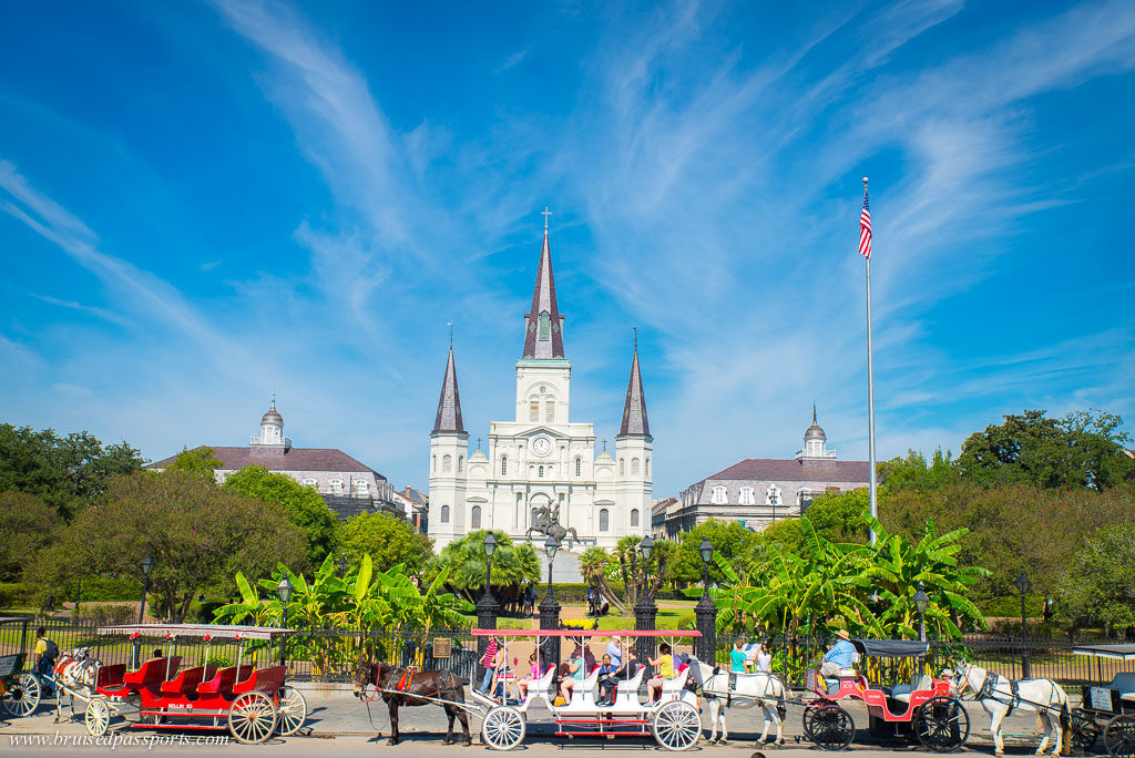 Cathedral and horse carriages in New Orleans
