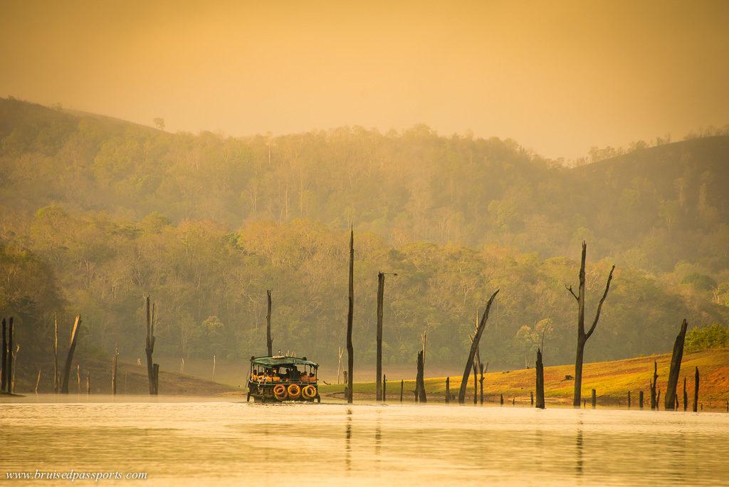 Periyar National Park road trip in Kerala