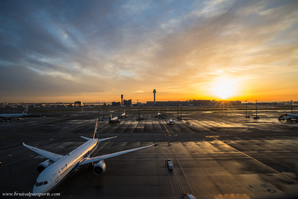 sunrise at Haneda airport's observation deck