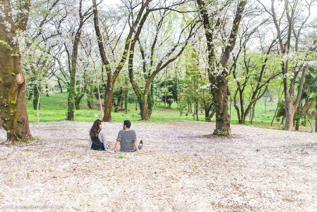couple enjoying Cherry blossom in tokyo's parks