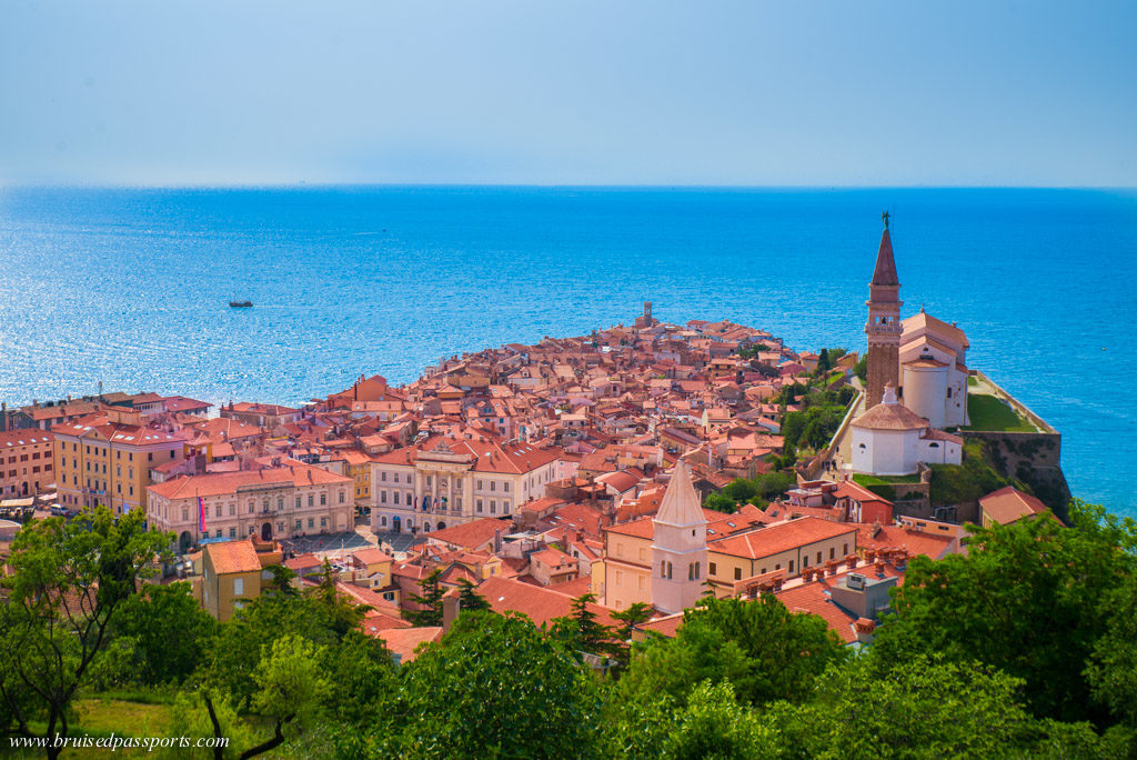 View of Piran old town from the walls