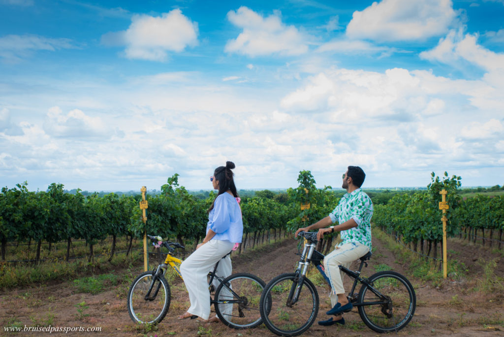 couple biking through a vineyard in India