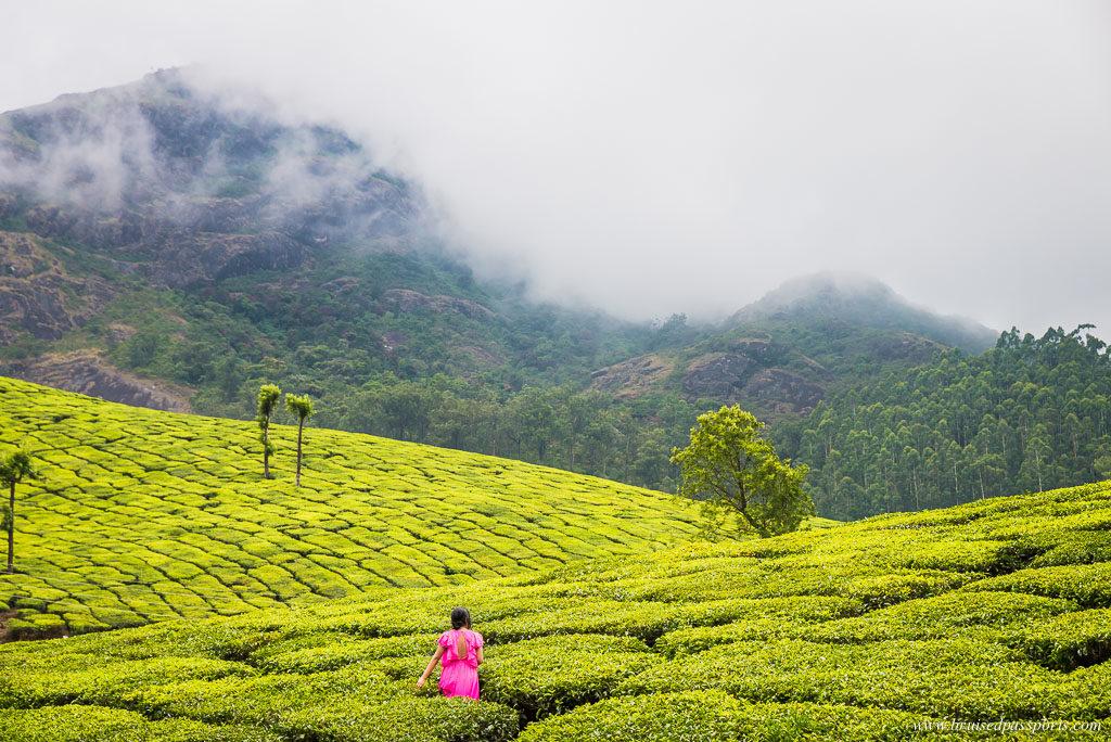 Kerala Road Trip Itinerary