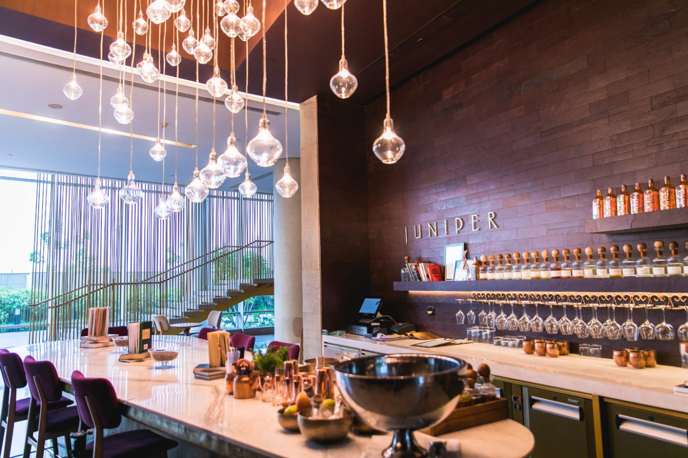 Juniper - the beautiful gin bar at Andaz Delhi
