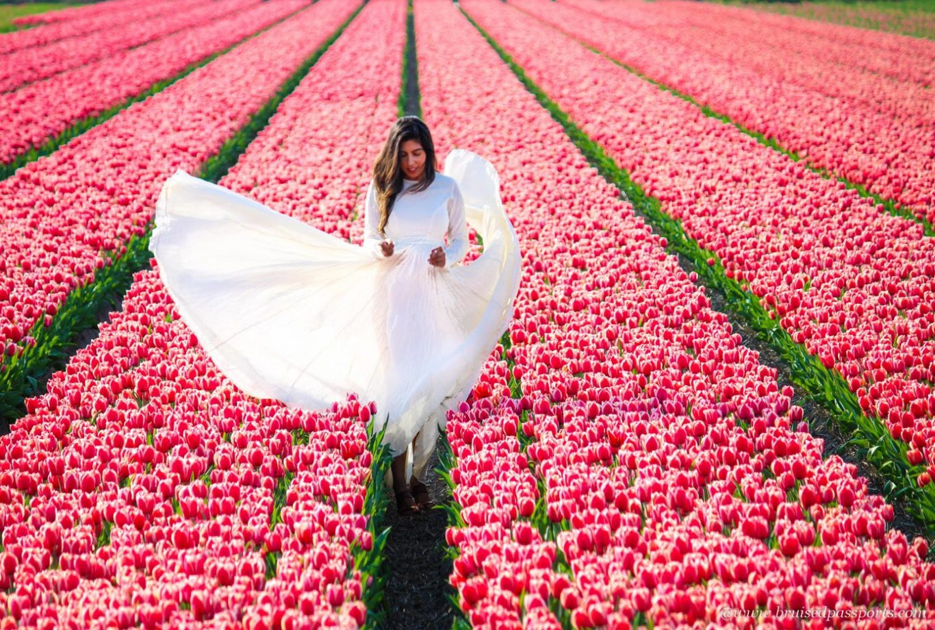 girl in white maxi in tulip fields of Netherlands