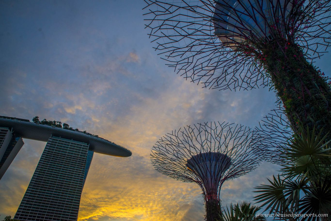 Gardens by the bay sunset Singapore
