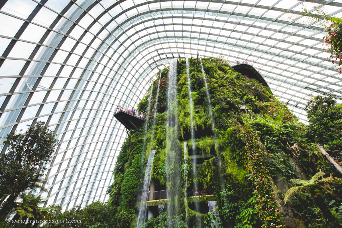 tallest man made waterfall at Gardens By The Bay