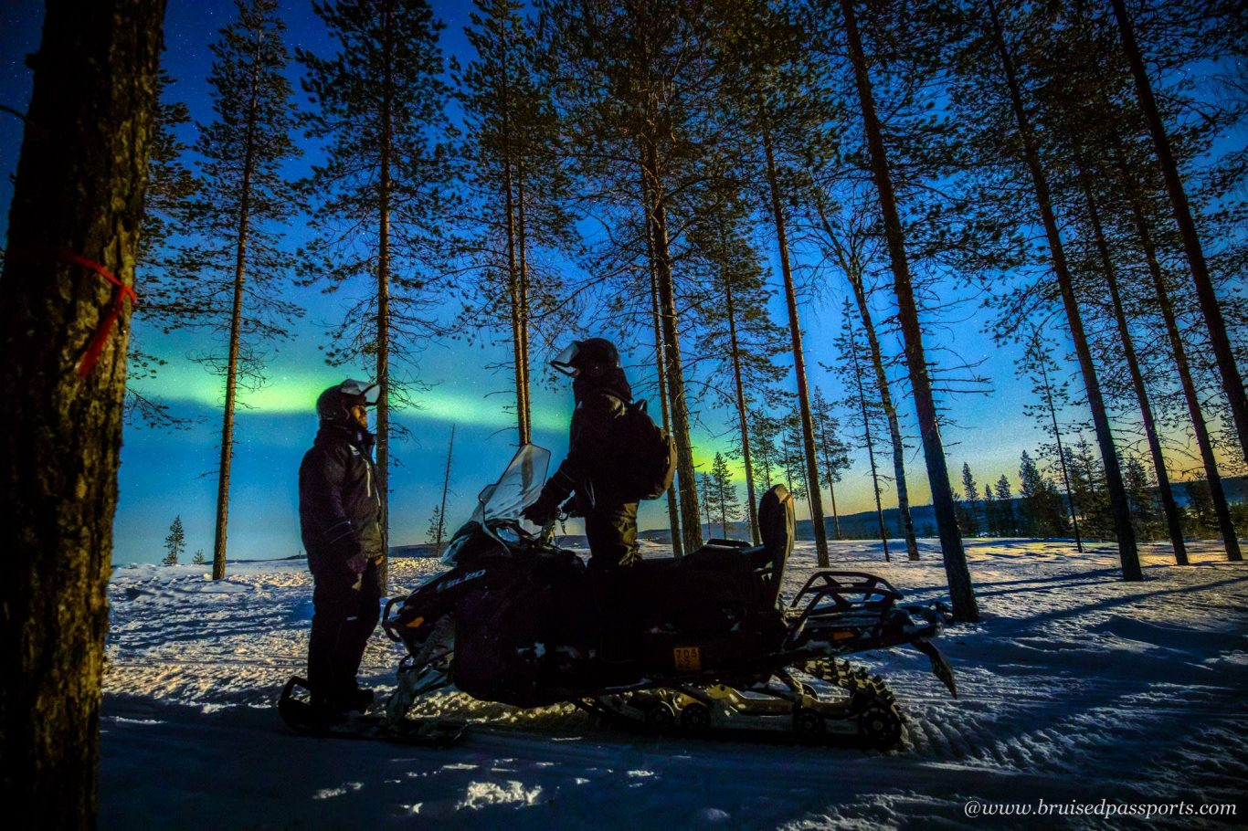 Snowmobile tour for Northern Lights in Rovaniemi
